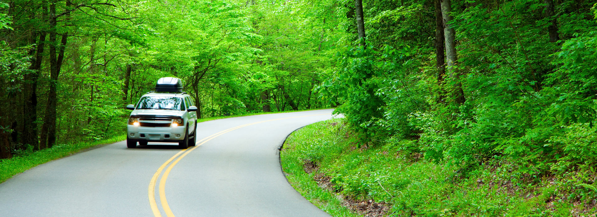 Erickson's Automotive is good for the environment. Erickson's Automotive is an Eco-Biz repair shop.